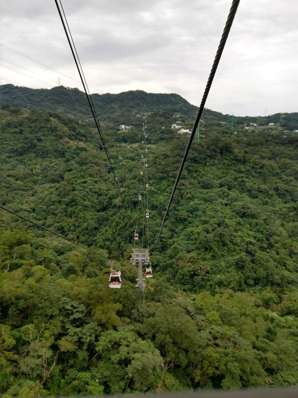 A somewhat vertigo-inducing photo of distant gondolas on a cable, taken from another gondola, over heavily wooded terrain.