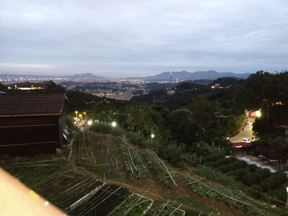 A view of a hillside with gardens and a lit road. In the distance you can just barely make out Taipei 101, a particularly well-known building in Taipei.