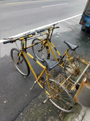Two bikes that have been attached side-by-side with makeshift bars. The handlebars are connected with something like baling wire and a broomstick.
