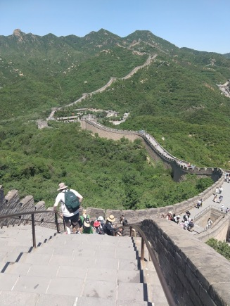 A thoroughly restored section of the Great Wall of China, winding its way over verdant hills. In the foreground, steps down, with a railing.