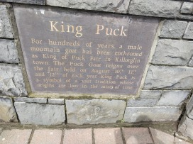 """A sign reading: """"King Puck - For hundreds of years, a male mountain goat has been enthroned as King of Puck Fair in Killorglin town. The Puck Goat reigns over the fair held on August 10th, 11th, and 12th of each year. King Puck is a symbol of a vast tradition whose origins are lost in the mists of time."""""""