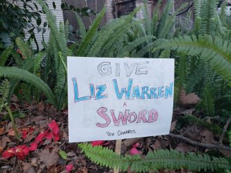 A handmade sign in pink, white, and blue lettering saying GIVE LIZ WARREN A SWORD YOU COWARDS. (You Cowards is in much smaller lettering.)